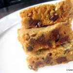 Graham Cracker Chocolate Chip Blondies