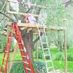 Tree Fort with a Swing!