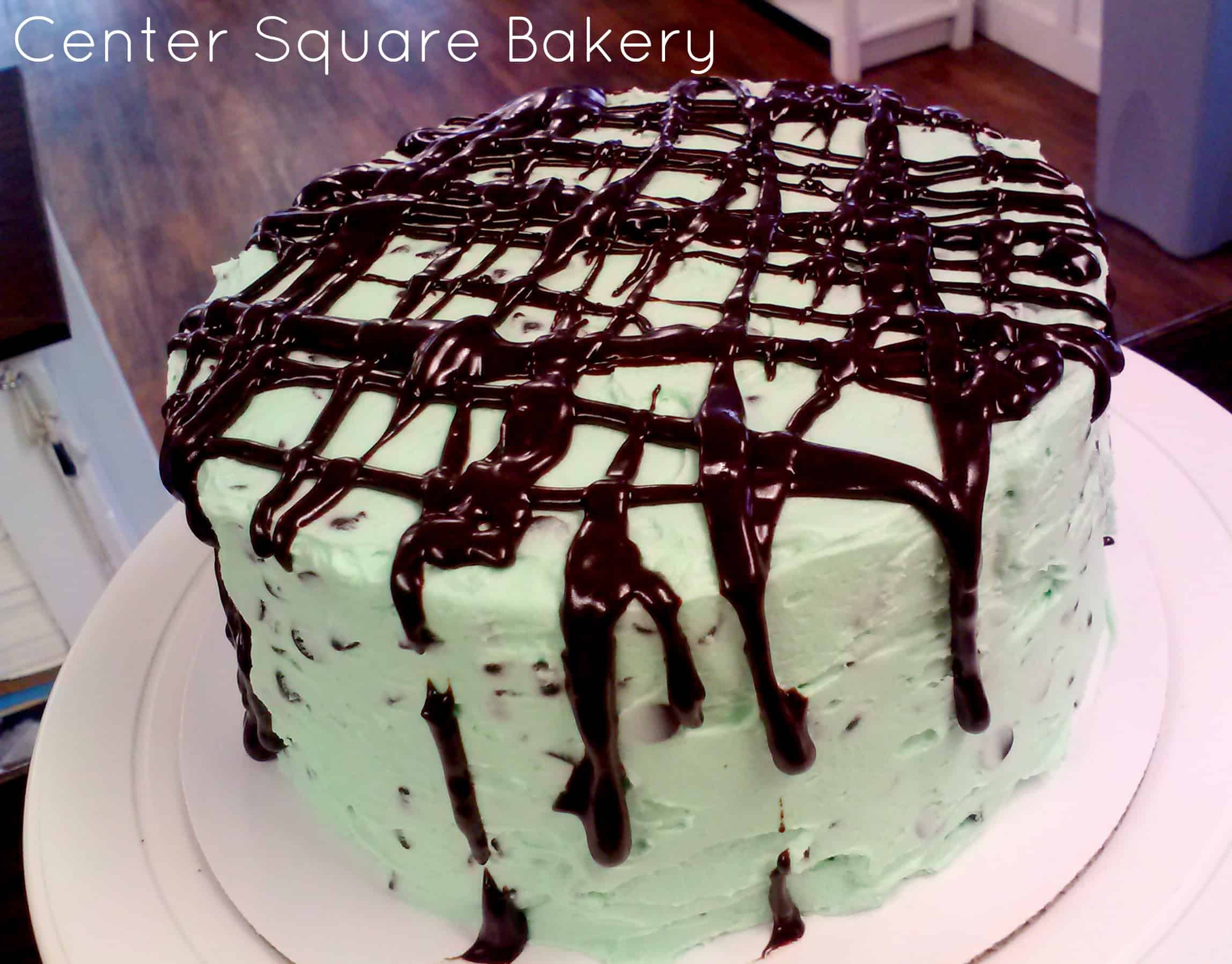 Mint Chocolate Chip Cake - A Turtle's Life for Me