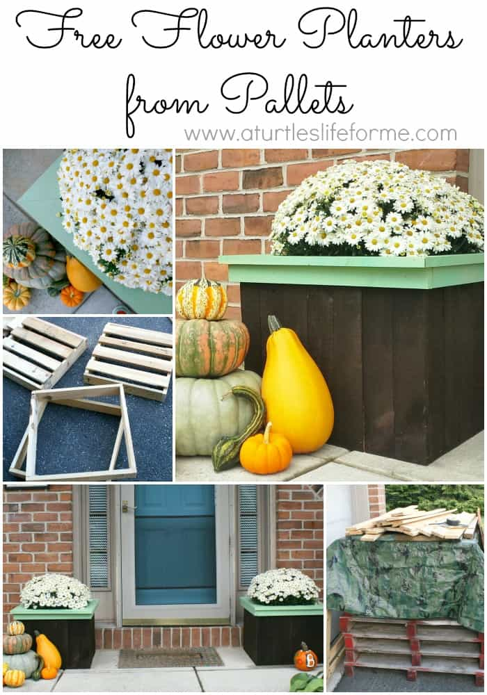 flower planters pallets boxes diy plans