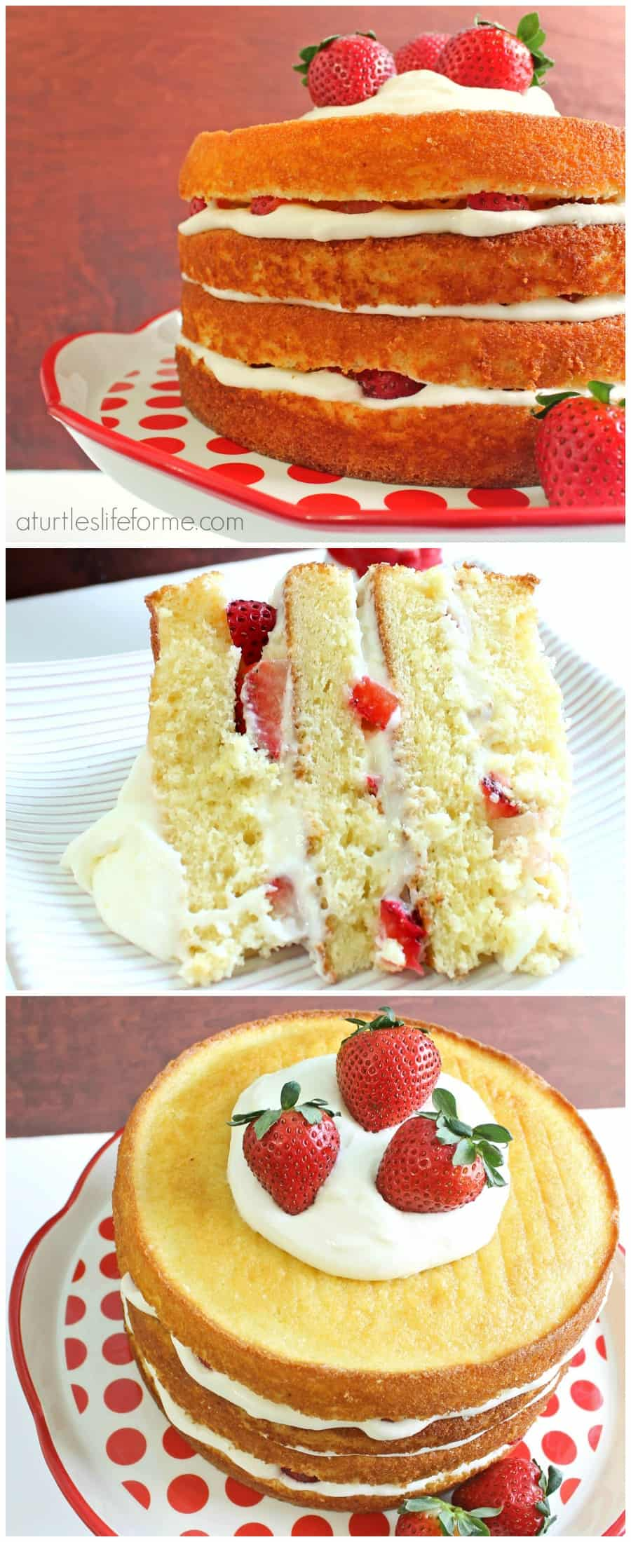 Strawberry Lemon Cake Recipe - A Turtle's Life for Me
