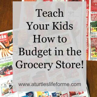 A simple and fun way to teach your kids how to grocery shop!