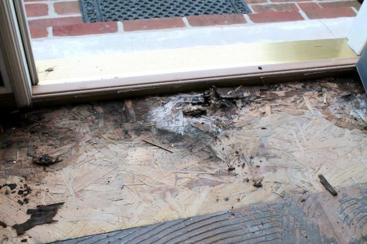 water leak repair by front door.