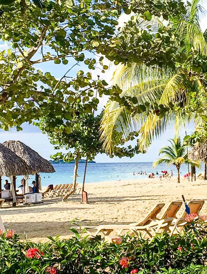 Sandy white beach at Beaches Negril- A Turtle's Life for Me