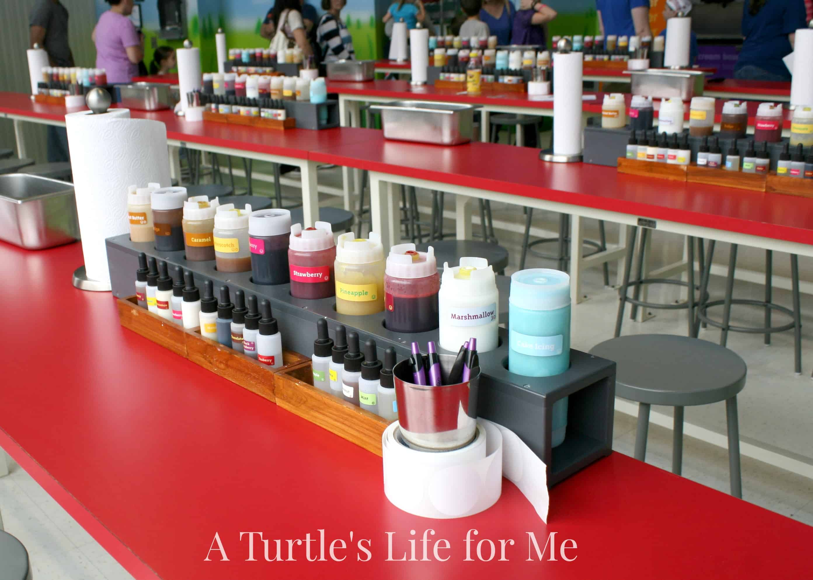 Turkey Hill Experience A Turtles Life For Me