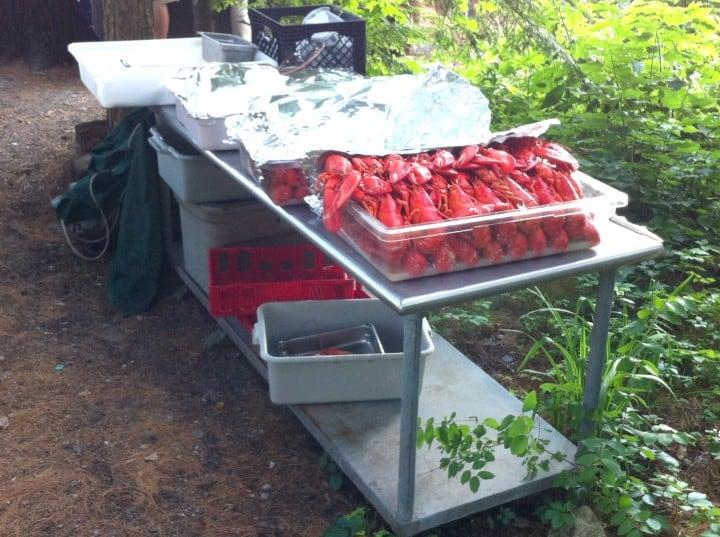 migis food lobster bake cookout