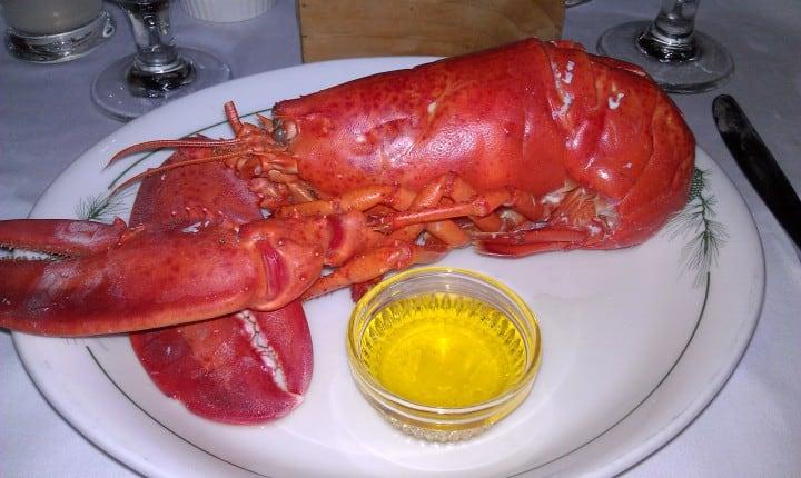 migis food maine lobster