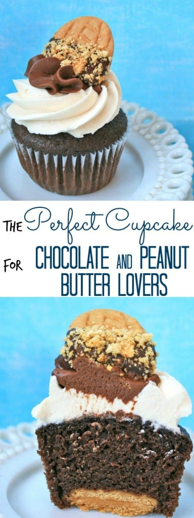 perfect cupcake for chocolate and peanut butter lovers