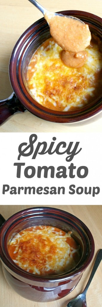 Spicy Tomato Parmesan Soup- A Turtle's Life for Me