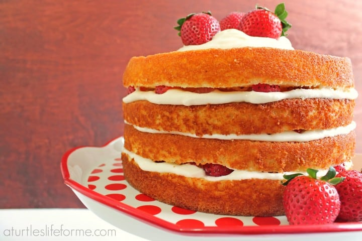 Strawberry Lemon Cake- A Turtle's Life for Me