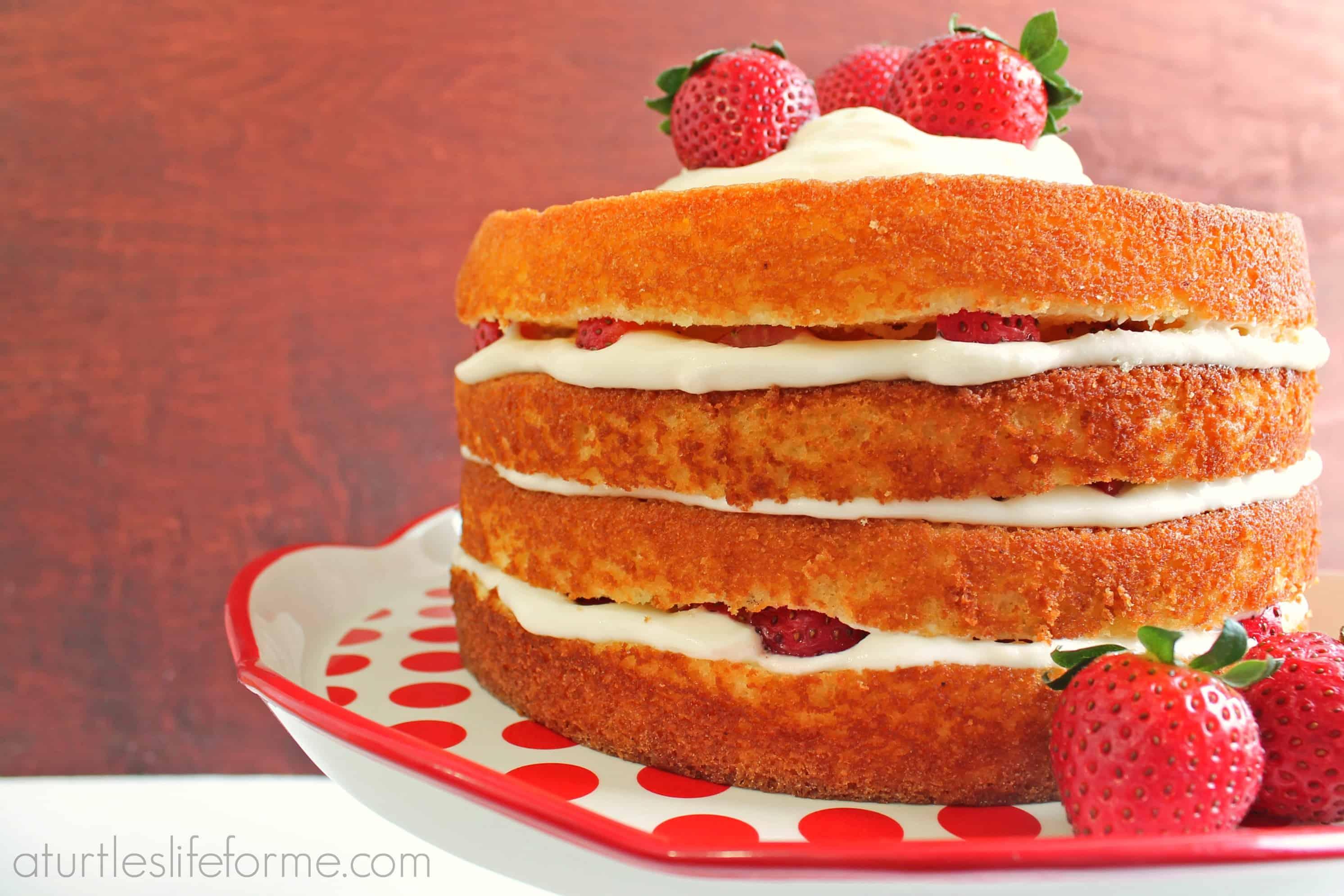 Homemade Cake Release Spray