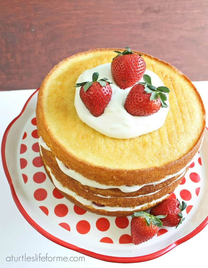 strawberry lemon layer cake topped with fresh whipped cream and strawberries on a white and red serving plate