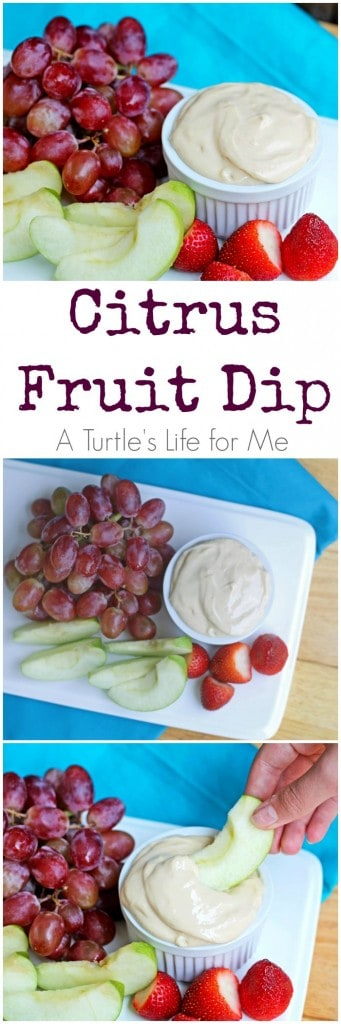 Citrus Fruit Dip Recipe - a light refreshing dip that's perfect for summer!