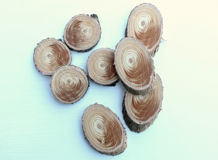 Wood slices for necklaces