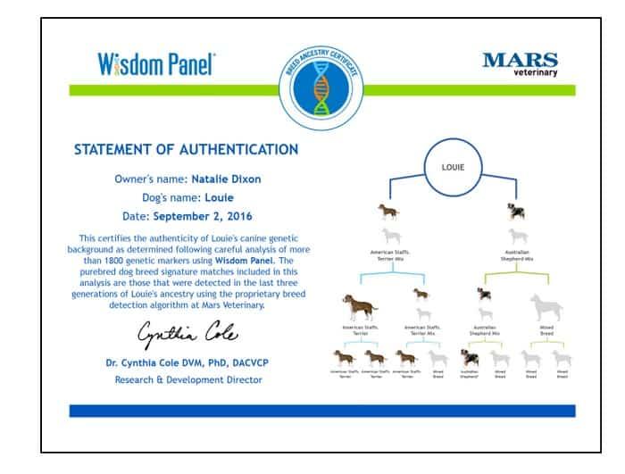 louies-certificate