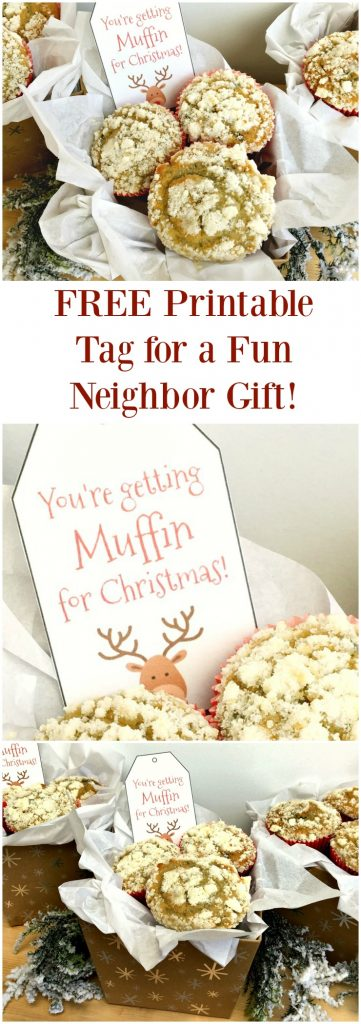 Great idea for a fun Christmas gift to give to neighbors and teachers! Plus there's a free gift tag to print in this post!