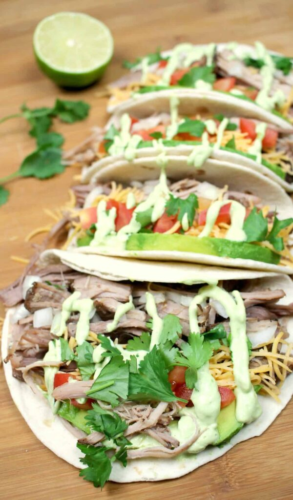 shredded-pork-carnita-taco-recipe