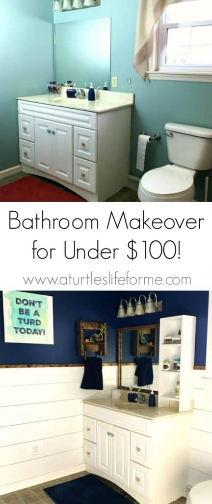 This looks like an entirely new bathroom for under $100!