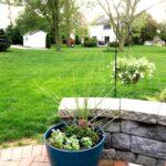 preparing your backyard for summer