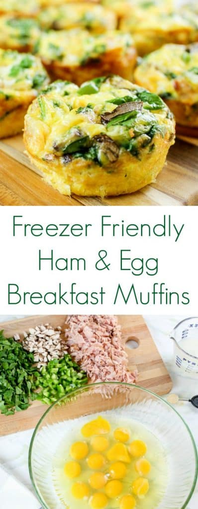 Freezer Friendly Ham and Egg Muffins