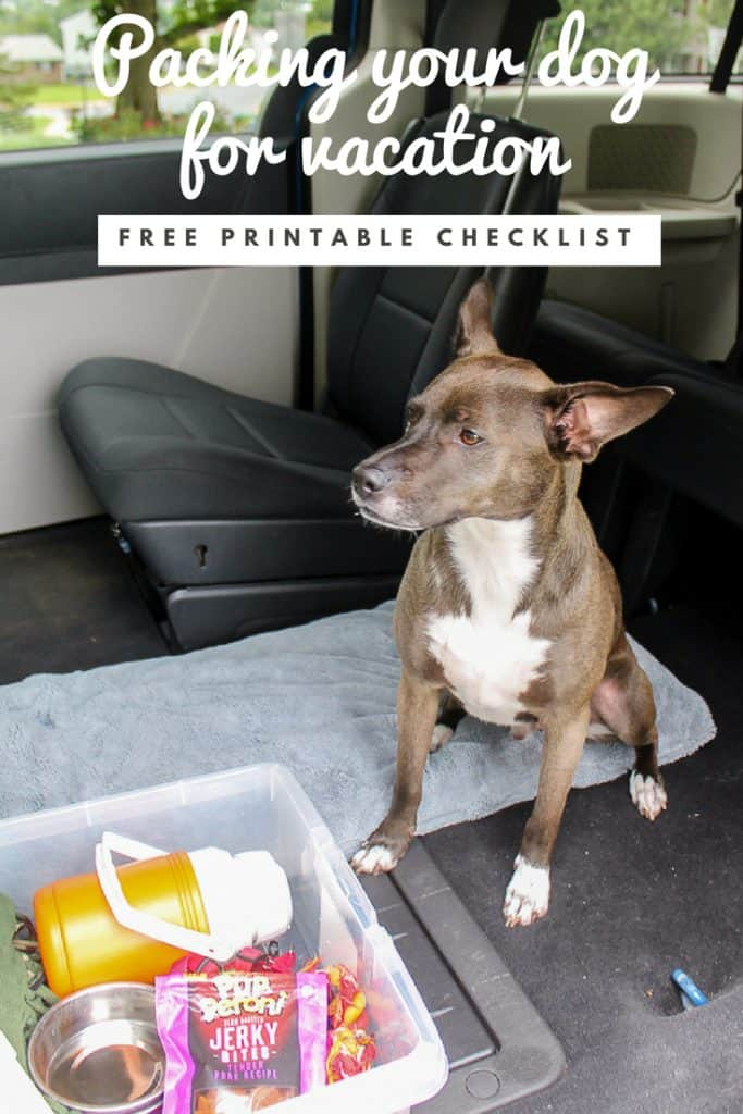 Dog Packing List for Vacation