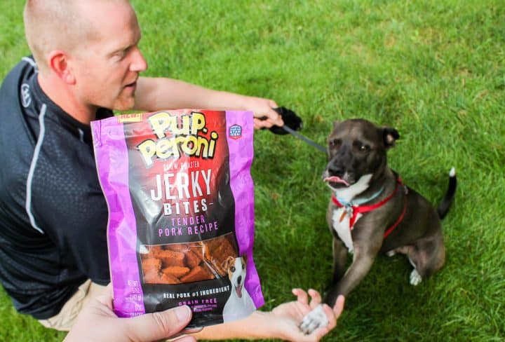 Pupperoni dog treats for your pet