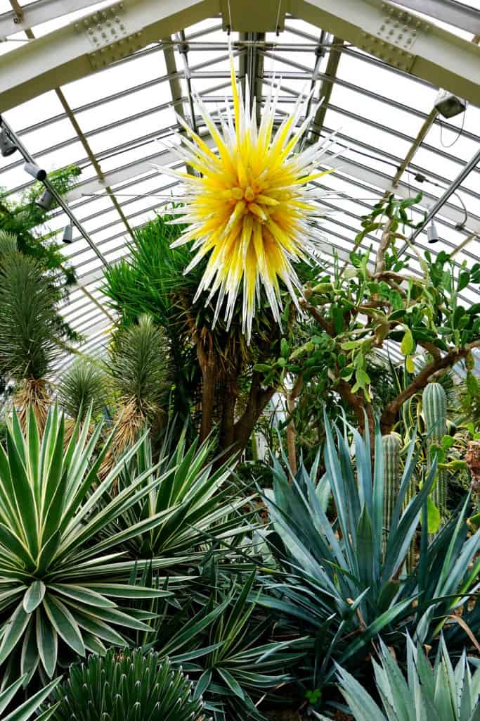 Phipps Conservatory Chihuly Exhibit