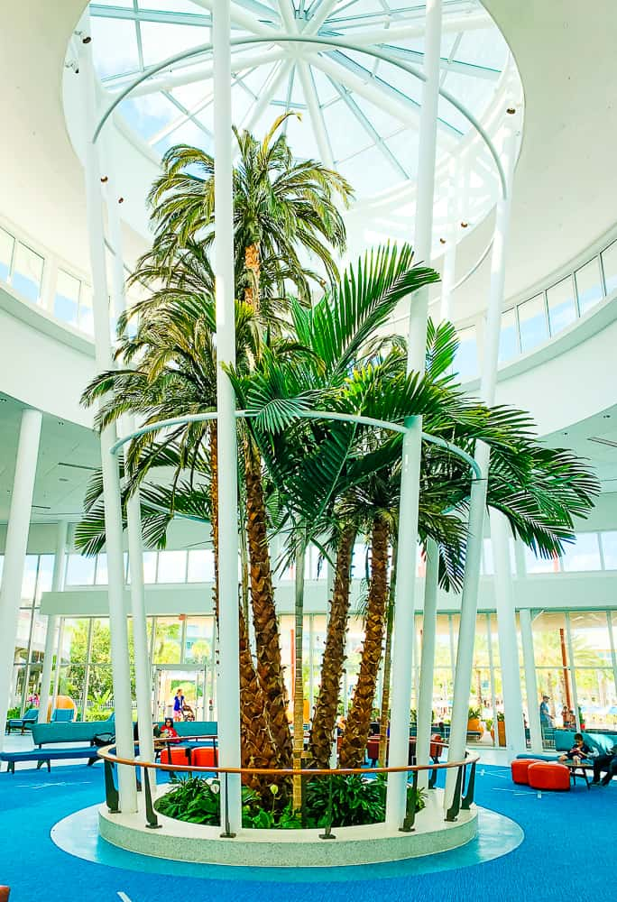 Palm tree in the lobby of the Cabana Bay Beach Resort
