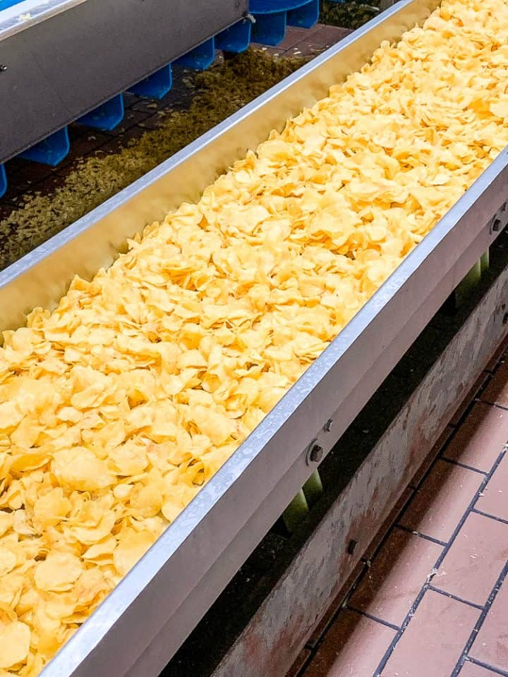 potato chips on a conveyor belt at Martin's Snacks tours