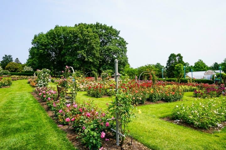 Hershey Gardens 23 acres of roses