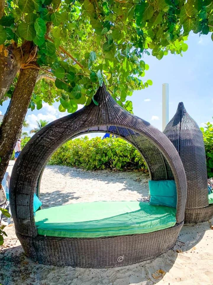 beach beds with green cushions on the sand with a tree behind it