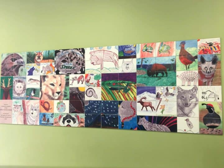 wall collage of handrawn pictures of animals by kids